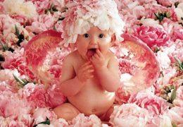 photo-bebe-cherubin