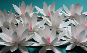 belles-fleurs-papier-tutoriel-photo