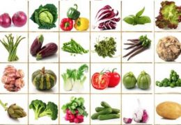 photos-legumes-varies-alimentation-enfants